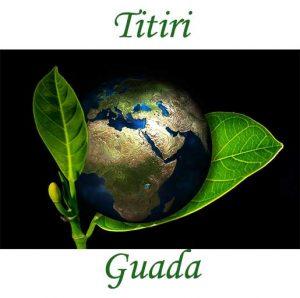 titiri-guada-logo